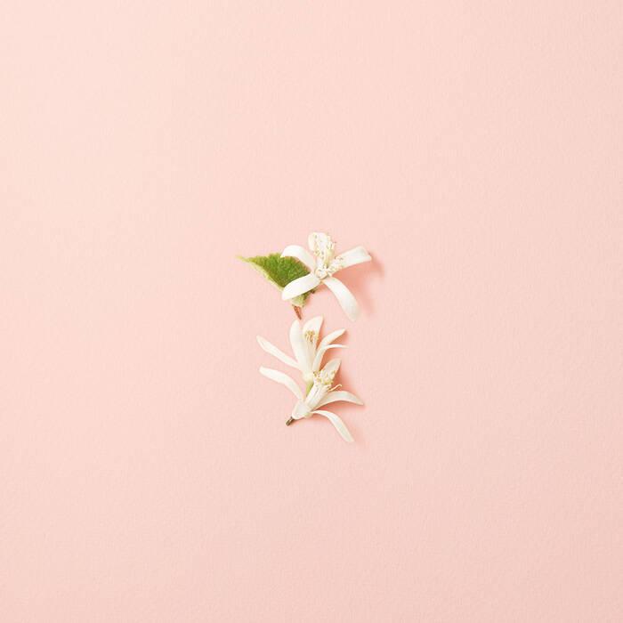 Sì Fiori Eau De Parfum Womens Fragrance Giorgio Armani Beauty