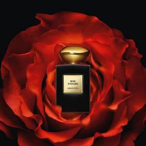 Rose D'Arabie L'Or Du Desert