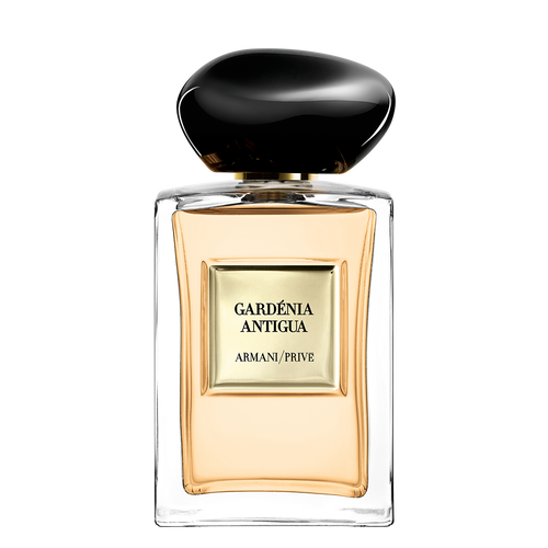 Gardenia Antigua